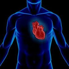 Sleep-Apnea-and-Heart-Disease-How-does-the-link-get-established